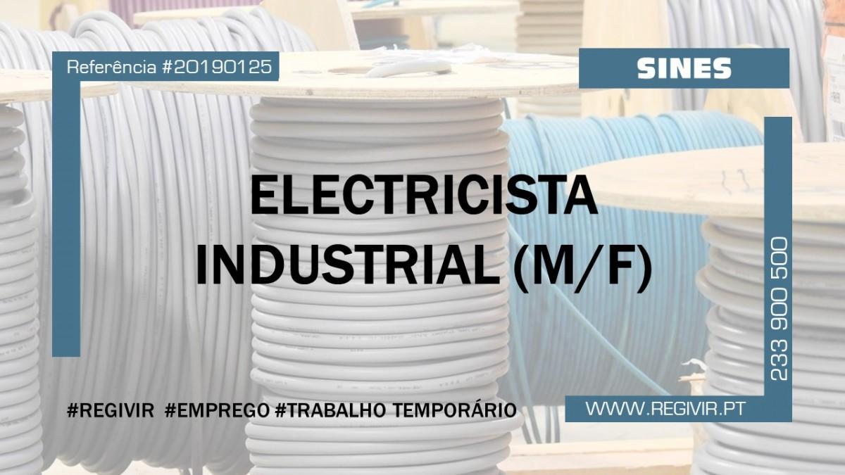 20190125 Electricista Industrial Sines