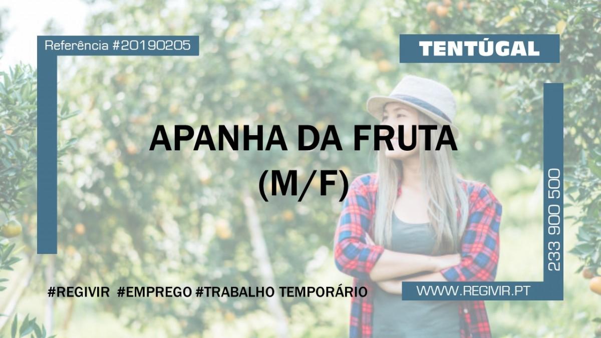 20190205 - Apanhada Fruta