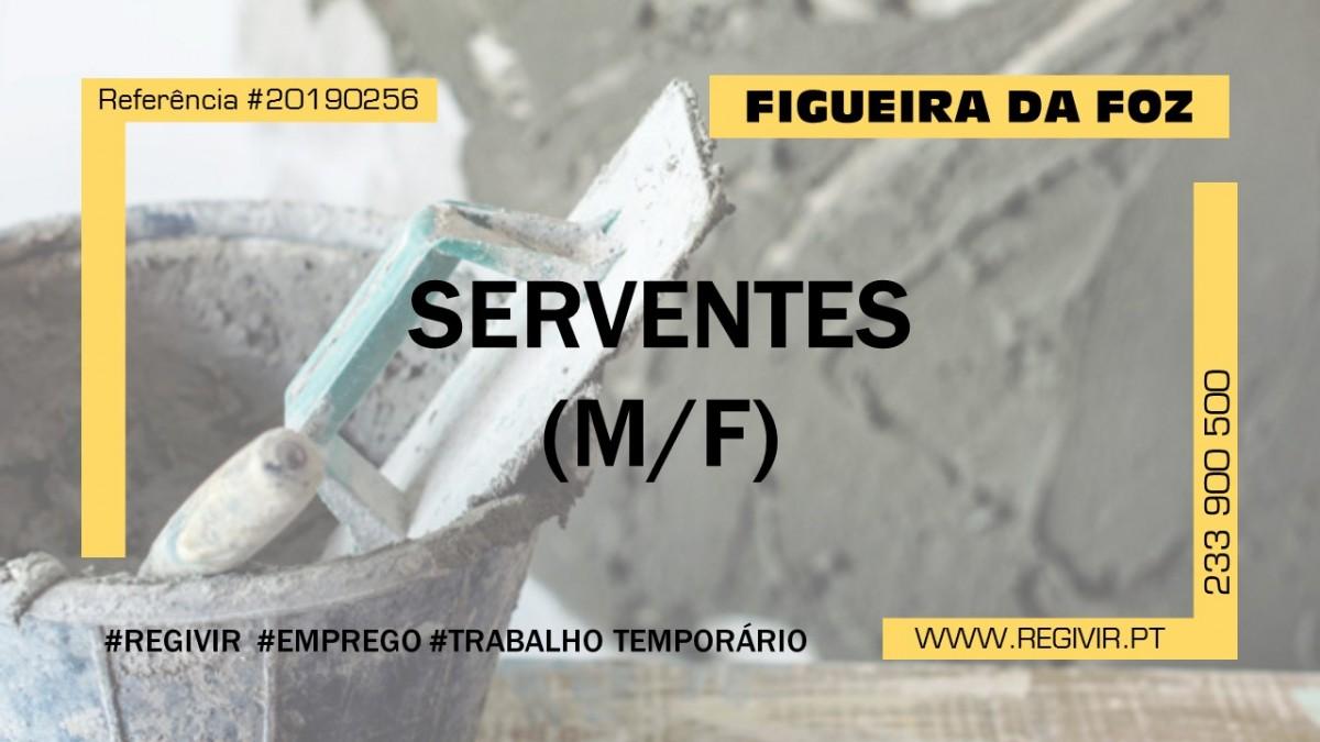 20190256 - Serventes